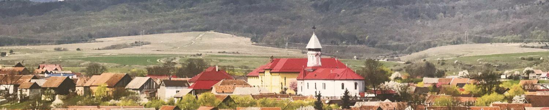 Primăria Dumbrăvița, Județul Brașov